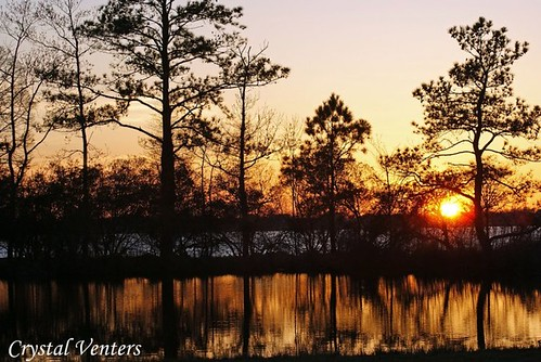 park trees sunset summer beach point bay virginia back dusk august va marsh pungo munden crystalventers