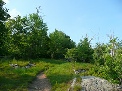 Trail Along Ridge
