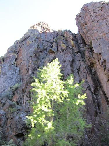 Monroe Canyon, utah IMG_1372