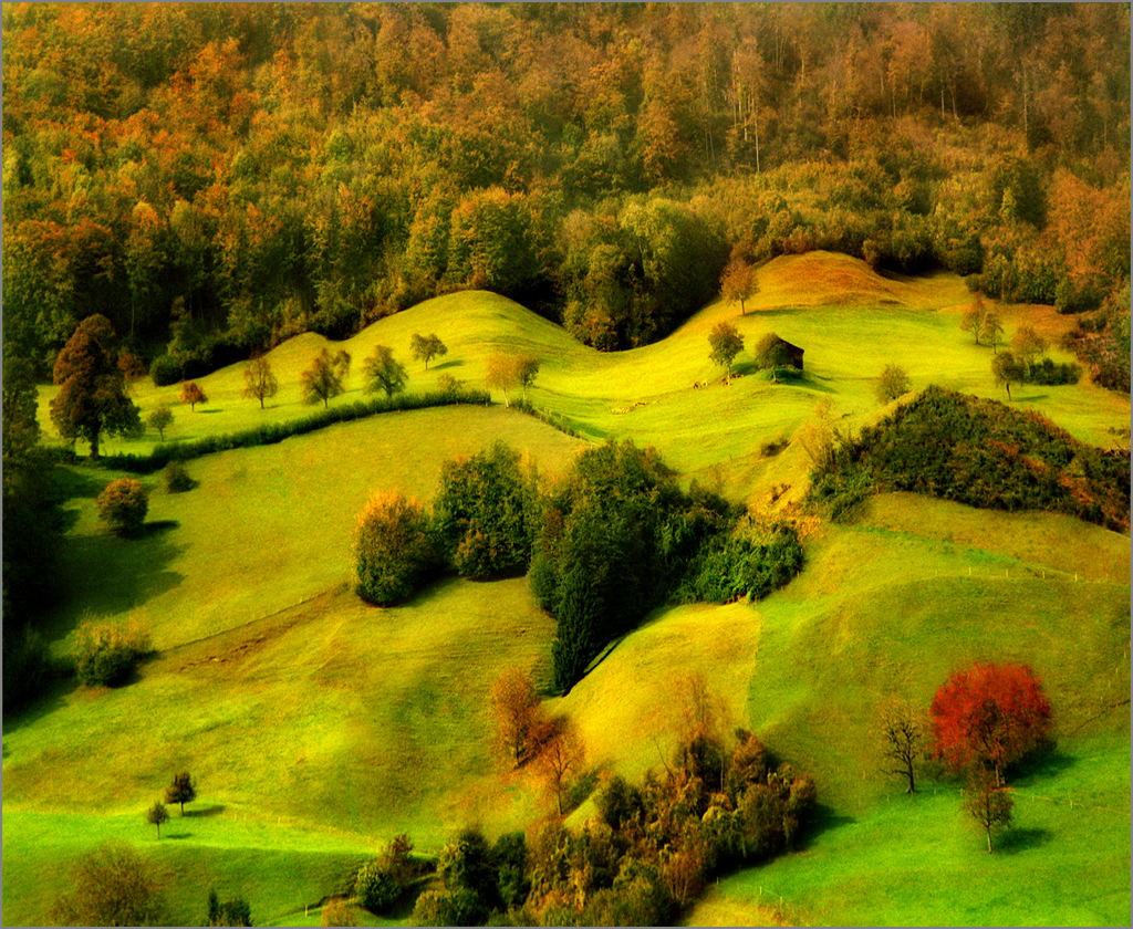 Breath of Autumn by Katarina Stefanovic