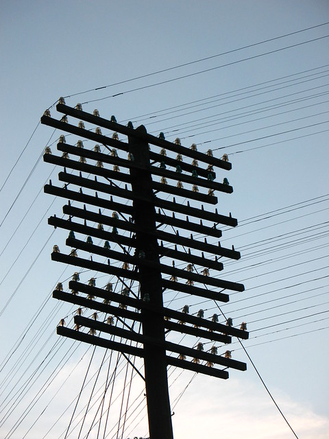 Old telegraph pole with glass insulators along the for Glass telephone pole insulators