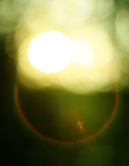 line(0.0), reflection(0.0), corona(0.0), astronomical object(0.0), yellow(1.0), light(1.0), green(1.0), circle(1.0), lens flare(1.0),