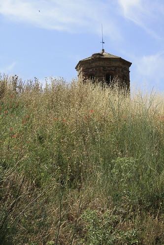 se asoma la torre (_MG_5887)