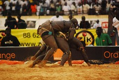 animal sports(0.0), rodeo(0.0), western riding(0.0), bull(0.0), equestrian sport(0.0), matador(0.0), bullfighting(0.0), event(1.0), sports(1.0), traditional sport(1.0),