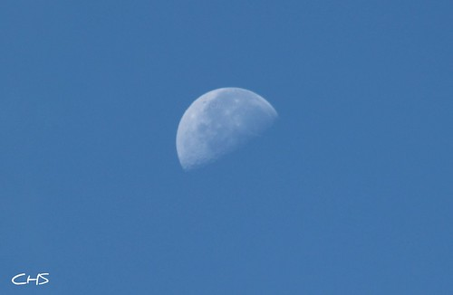 Daytime moon by Claire Stocker (Stocker Images)