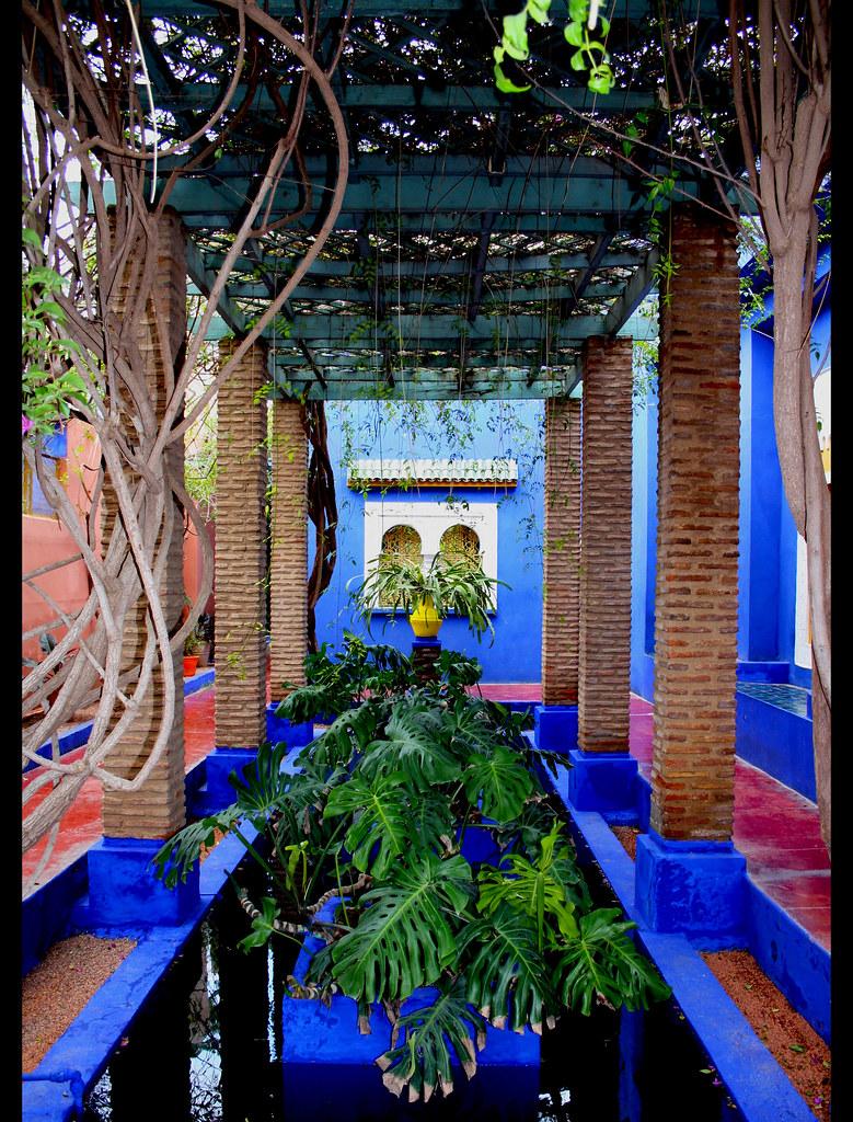 Jardin majorelle marrakech 8000 m 300 esp ces for Jardin majorelle