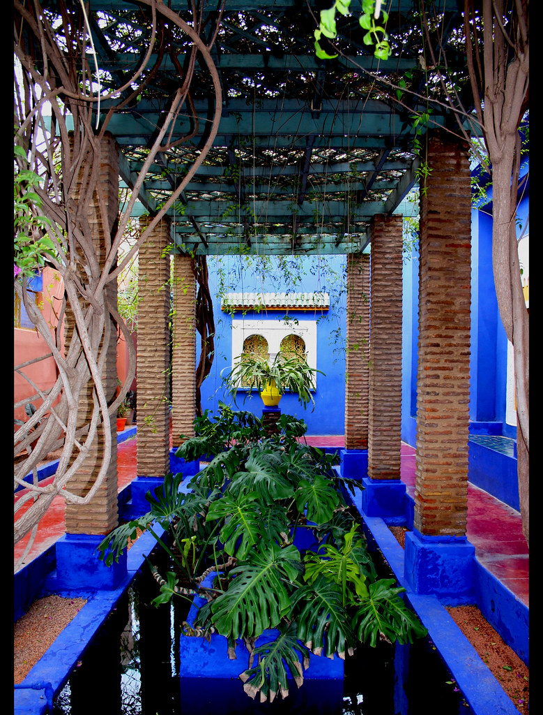 jardin majorelle marrakech 8000 m 300 esp ces. Black Bedroom Furniture Sets. Home Design Ideas