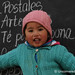 A Cutie at La Polvorilla Viaduct - Northwestern Argentina