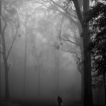 Stranger in the woods, Nandi Hills