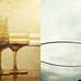 Week 20 - Transparent by The Shutterbug Eye™