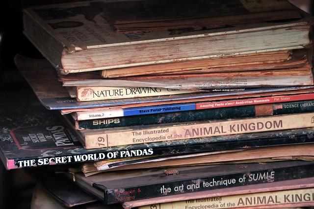 Books w/55-300 VR II