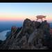 Mountain Goat, Mt Ellinor, Washington by Jon Brenner