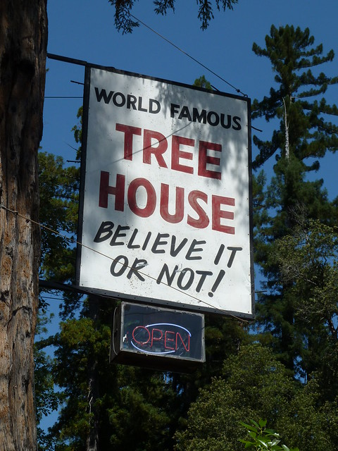 The World Famous Tree House Flickr Photo Sharing
