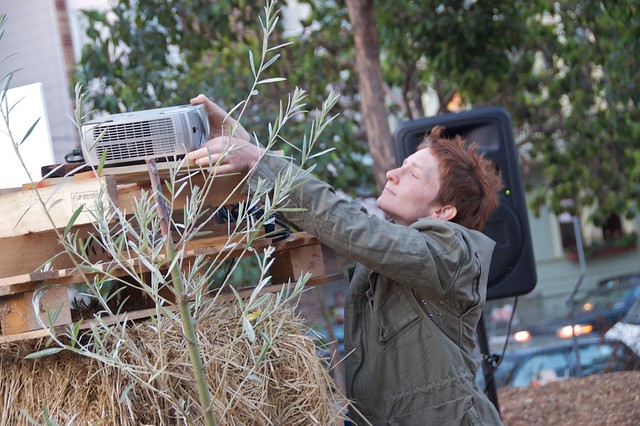 Dusker at Hayes Valley Farm 124
