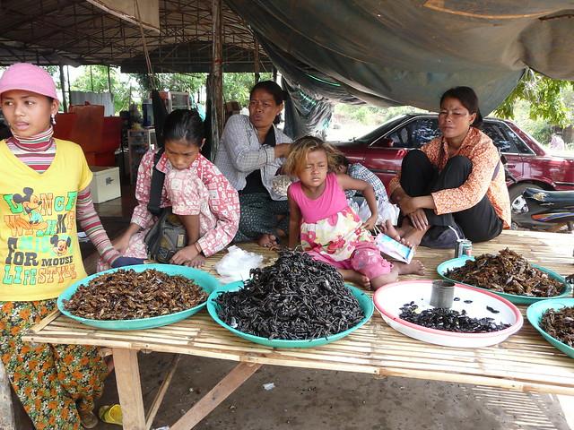 Puesto de arañas fritas en Skuon (Camboya)