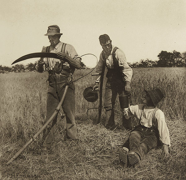 In the Barley Harvest, by Peter Henry Emerson 1890