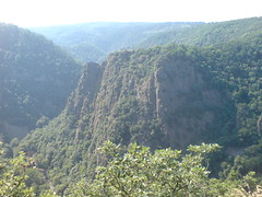mountain, valley, mountain range, hill, hill station, ridge, forest, terrain, jungle, vegetation, escarpment, cliff, mountainous landforms,