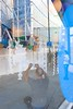 paper chain (artcrunch-popupology-futurising) by elod beregszaszi