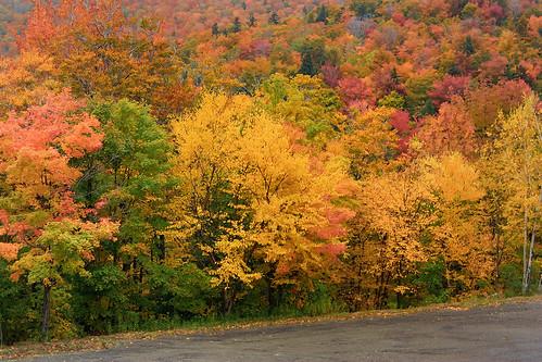 autumn fall landscape scenery vermont unitedstates scenic newengland scene foliage stowe 2009 vt vermonth morsesmill