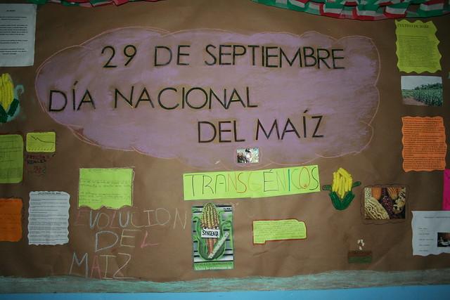 Peri dico mural d a nacional del ma z 4 peri dico mural for Contenido del periodico mural