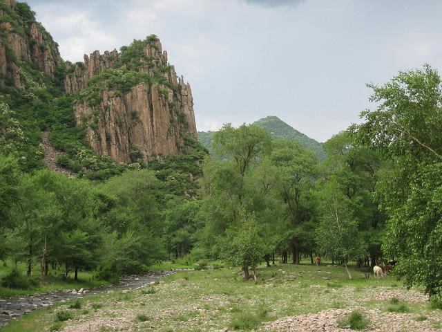 中国河北省张家口市赤城县三道川乡黑龙山村