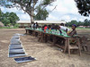 Students work outside with solar power