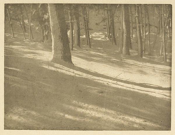 Winter Shadows, by Alvin Langdon Coburn 1903