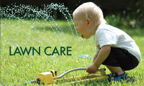 lawn care cutting service landscaping huntersville lake norman concord nc