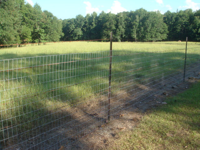 Welded wire fence for dog kennels fencing