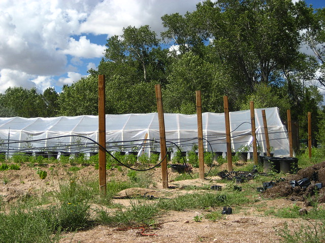 'Think Outside The Bomb' Youth Permaculture Encampment, Chimayo New Mexico