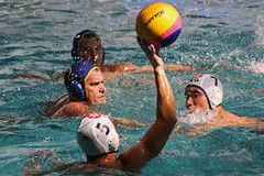 individual sports(0.0), water & ball sports(1.0), water polo(1.0), swimming(1.0), sports(1.0), recreation(1.0), outdoor recreation(1.0), leisure(1.0), team sport(1.0), swimmer(1.0), water sport(1.0), ball game(1.0),