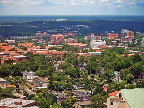 campus university cityscape florida floridastateuniversity fsu aerialview tallahassee