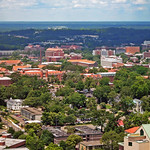 Florida State University from atop State Capitol