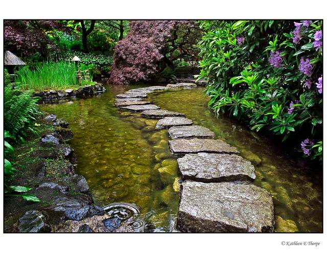 Japanese garden stepping stones flickr photo sharing for Japanese garden stones