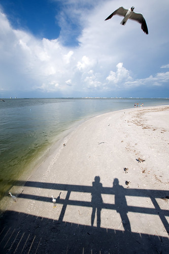 ocean sea summer selfportrait bird beach clouds pier shadows sanibel sooc lkgphotography