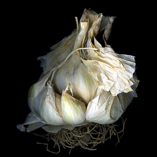 FRENCH GARLIC ...