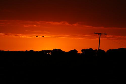 sunset birds rural scotland sony hills views redsky alpha dslr a200 solway natureplus southwestscotland sonyalphadslra200 naturesgreenpeace