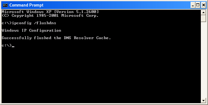 Clear the DNS Resolver cache using Command Prompt