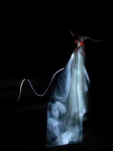 DAV_2149M Fantasma caprino