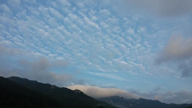 아침풍경 | 양떼구름