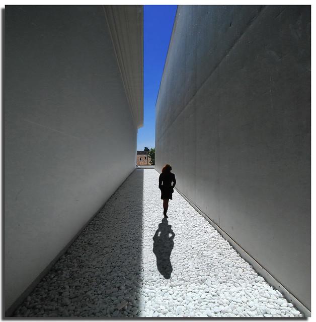 Walking among light and shadow