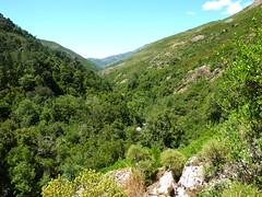 Retour à Monte Estremu : vallée du Fangu vers Monte Estremu