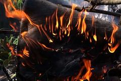 Splayed fire