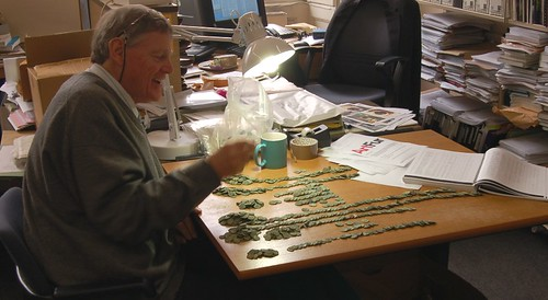 Roger Bland sorting coin hoard bag 1