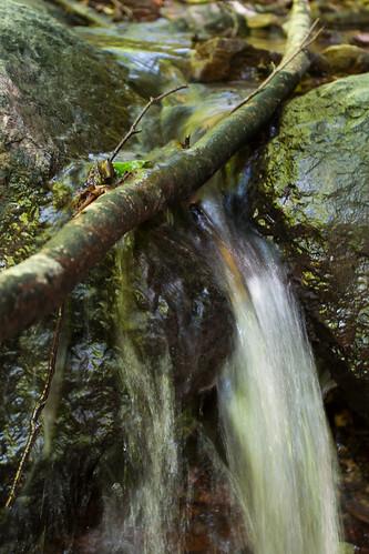 wood nature public austria österreich natur wald wandern steiermark styria wanderung südsteiermark kitzeck canoneos30d mitteregg šsterreich sÿdsteiermark canonef41740mml