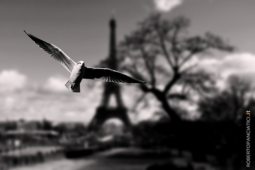Paris... from my eyes