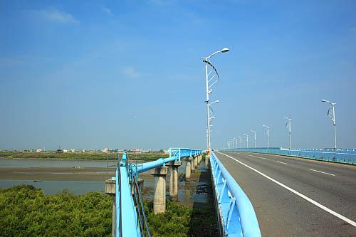 12Q1朴子溪生態-紅樹林-東石大橋