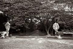 古时路径 / Path from ancient times