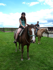 animal sports, equestrianism, english riding, mane, mare, stallion, equestrian sport, rein, endurance riding, halter, bridle, pack animal, horse tack, equitation, horse, pasture,