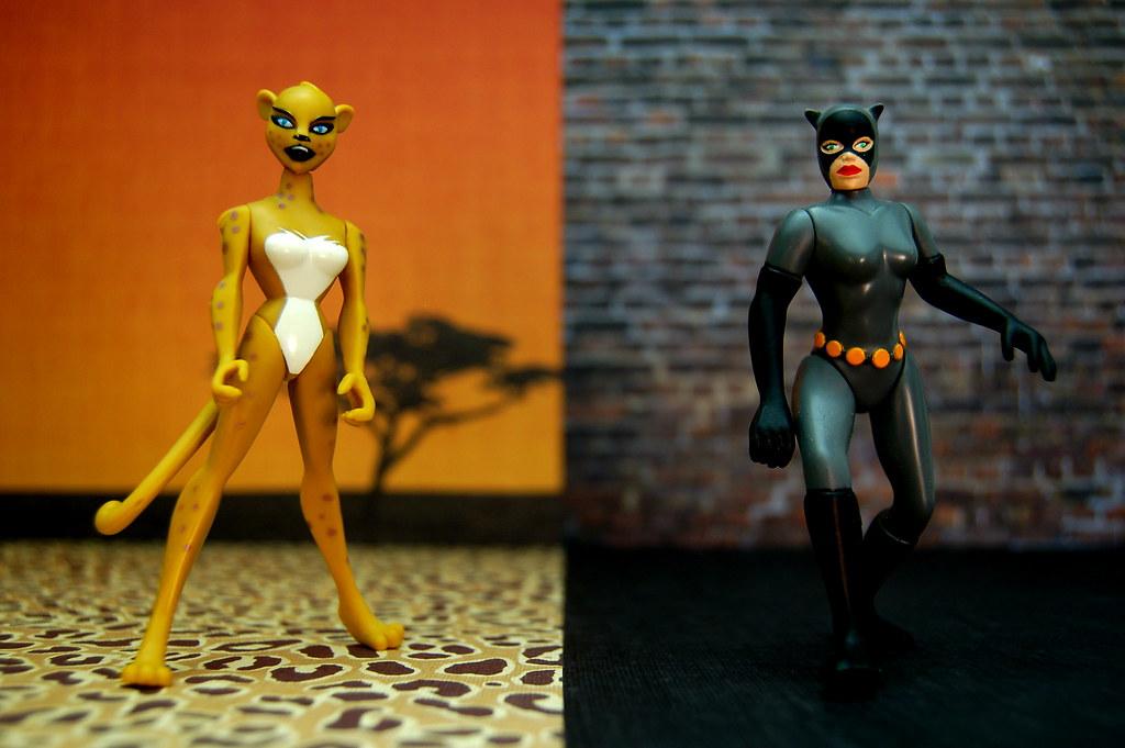 Cheetah vs. Catwoman (221/365)